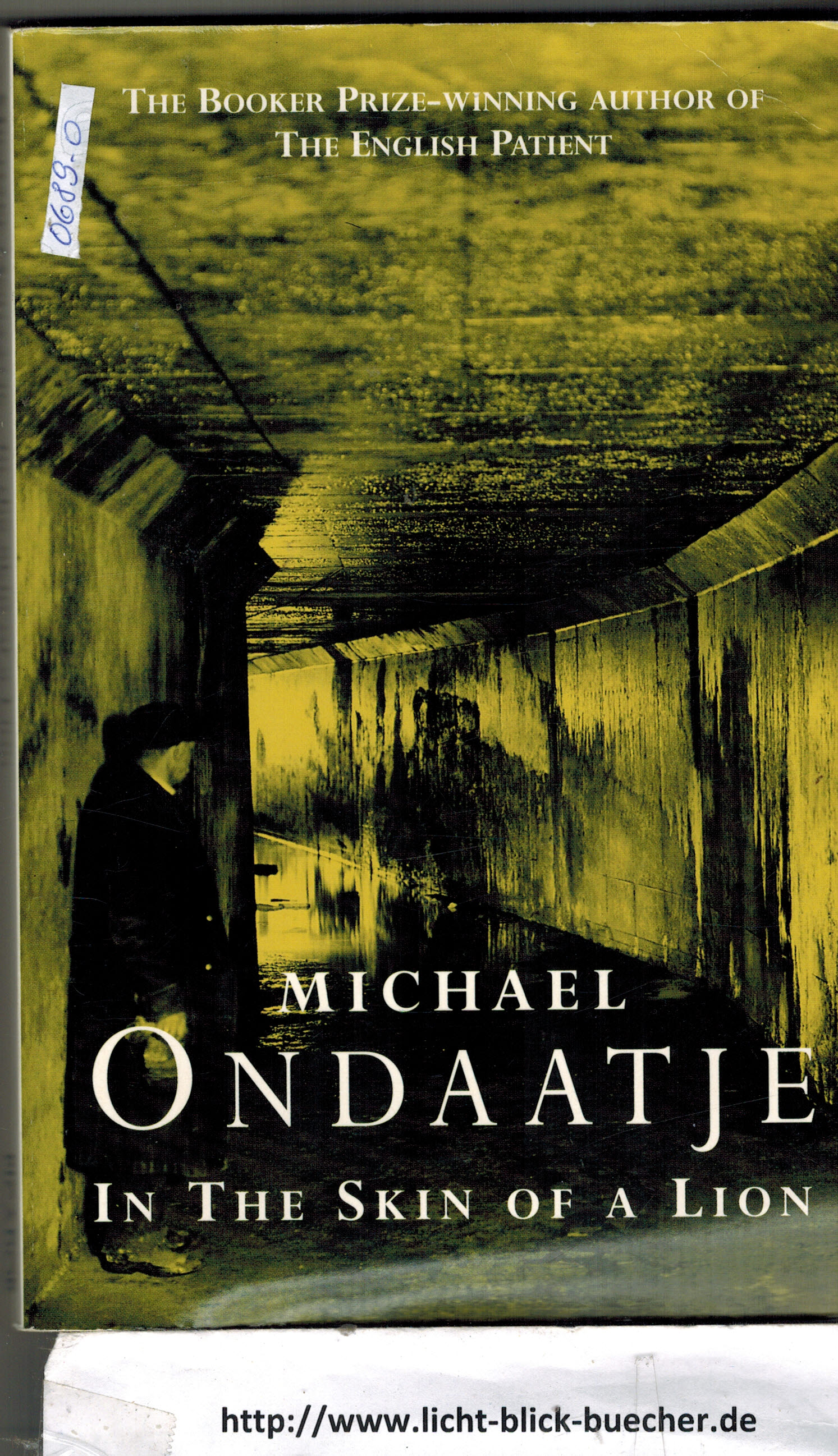 In a Skin of a Lion  Michael Ondaatje